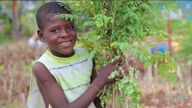 Haiti's urban garden